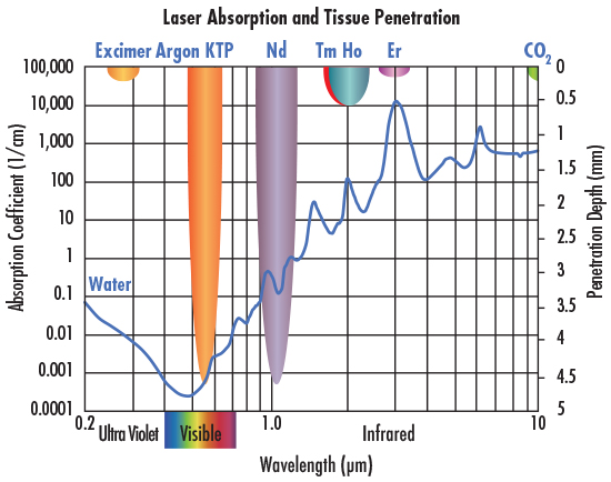 Absorption of water and tissue penetration depth at different wavelengths